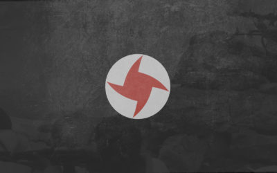 Freedom, duty, discipline and power: the SSNP in 28 questions